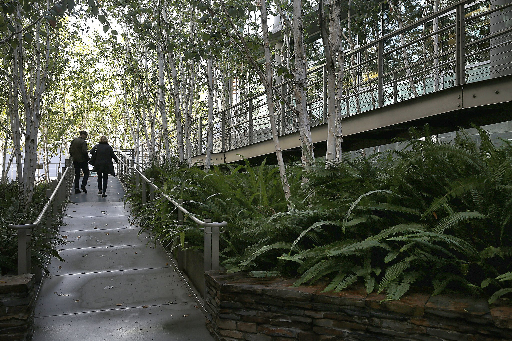 Landscape architects see creations evolve over time san for San francisco landscape architecture