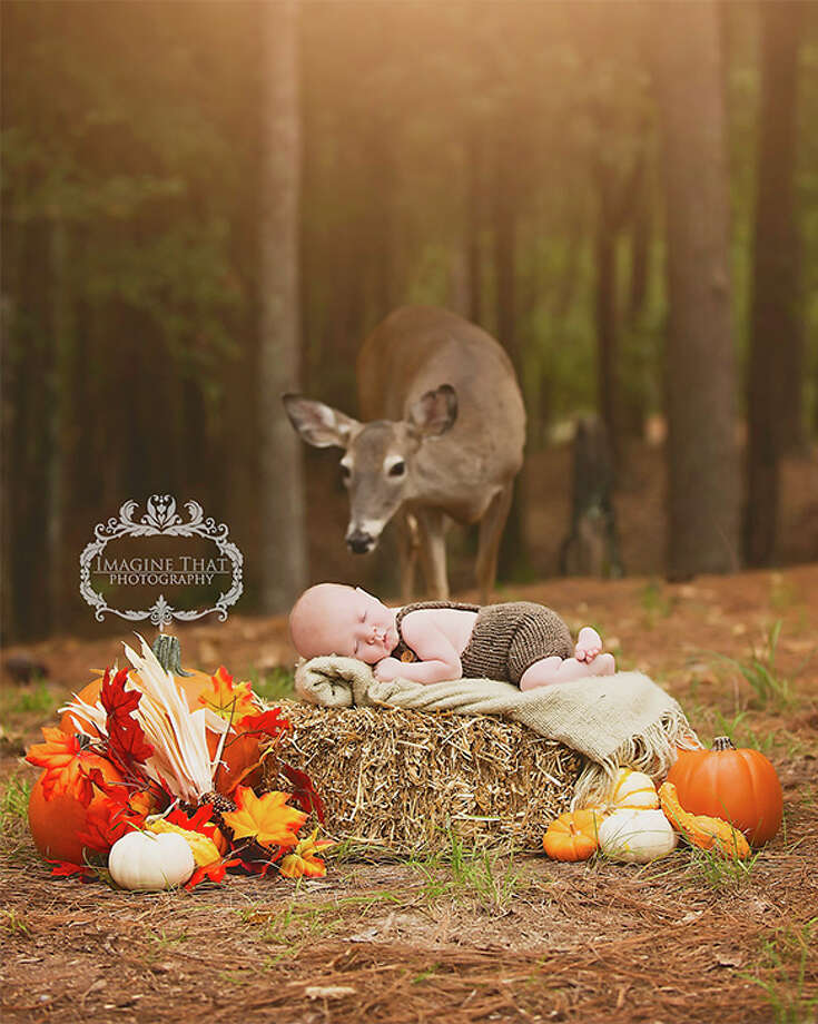 Louisiana photographer Megan Rion captured a magical woodland scene when a deer wandered into a photo shoot. Photo: Megan Rion/Imagine That Photography