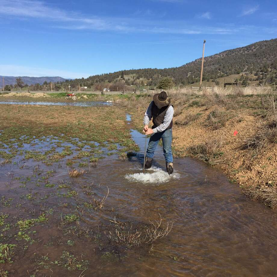 Jim Morris stands in a flooded field at Bryant-Morris Ranch in the Scott Valley, Siskiyou County in March 2015. Photo: Steve Orloff