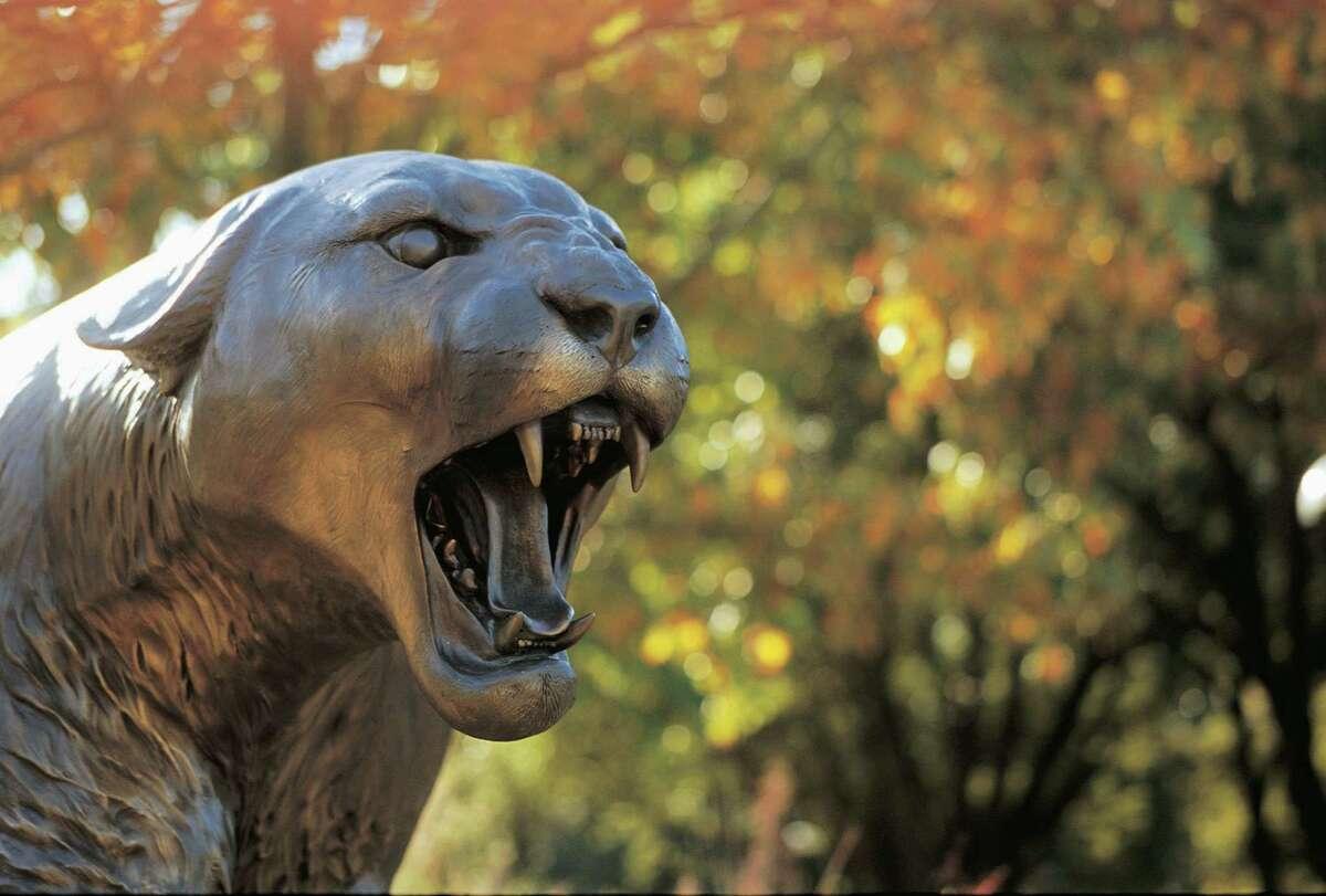 University of Houston mascot.