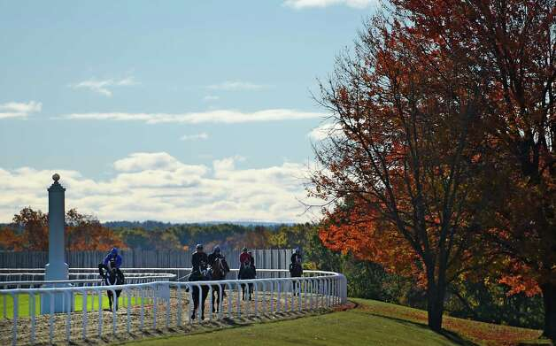 Horses exercise with the fall colors evident at the Darly Farm compound Friday morning Oct. 23, 2015 in Saratoga Springs, N.Y.    (Skip Dickstein/Times Union) Photo: SKIP DICKSTEIN
