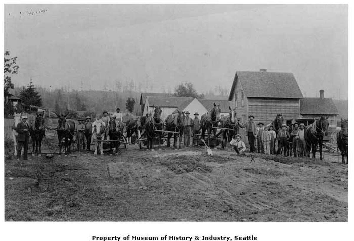 """""""A building boom started in Ballard after it was incorporated in 1890. Building streets was a real challenge. Loggers cut the trees, and teams of horses and mules dragged the stumps out of the ground. In a few cases, routes were laid out around stumps that couldn't be pulled. The streets then had to be cleared of debris, plowed, harrowed, and graded. Crews laid down wooden planks on some streets to make it easier to travel in mud . This photo, taken sometime in the 1890s, shows a street grading crew and their animals posed for the photographer in the 900 block of West 57th Street in Ballard."""" -MOHAI. Photo courtesy MOHAI, image number shs17199."""