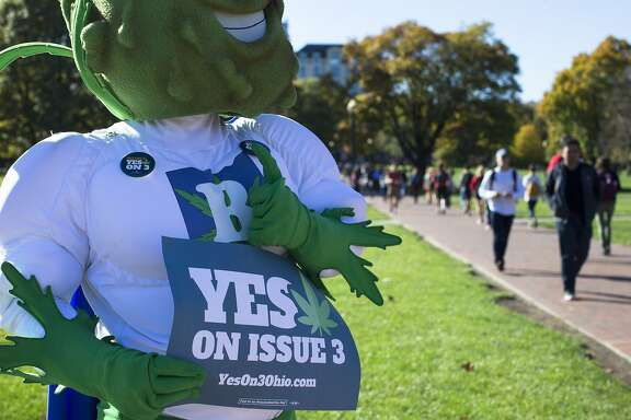 Buddie, the mascot for the pro-marijuana legalization group ResponsibleOhio, holds a sign as he gives a thumbs-up to students at the Ohio State University oval on election day, Tuesday, Nov. 3, 2015, in Columbus, Ohio. Eligible Ohioans headed to the polls today to decide whether to allow marijuana to be grown, processed and consumed within the state's borders. (AP Photo/John Minchillo)