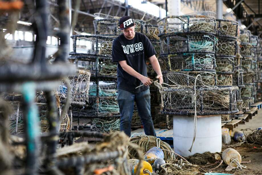 San Francisco based fisherman, Kegan Foster cleans crab traps at a garage in Fisherman's Wharf in order to get ready for the upcoming season, in San Francisco, California on Wednesday, November 4, 2015. Fisherman continue to get themselves ready for the season despite state health officials concerns that crabs along the coast of California are too toxic to eat. Photo: Gabrielle Lurie, Special To The Chronicle