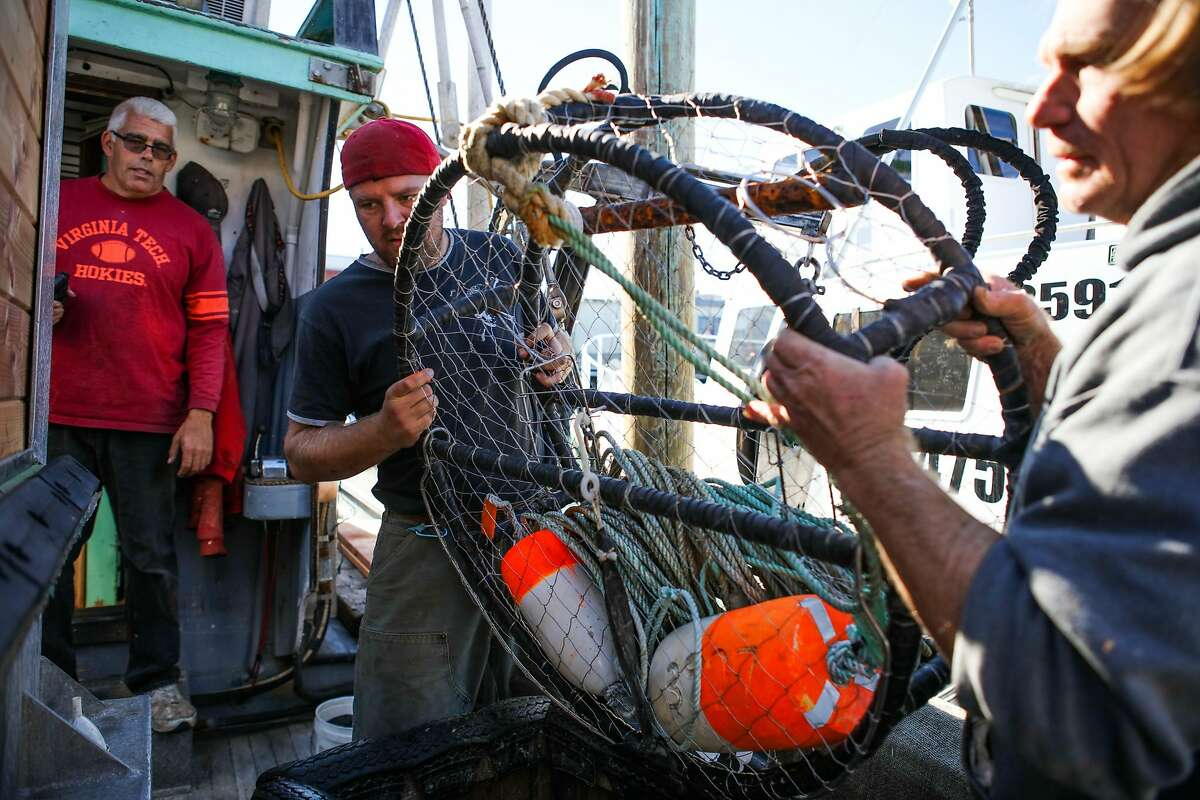 Captain Jason A. Salvato, watches his crew, Loren (center, declined to give last name) and David (right, declined to give last name), as they practice their crabbing technique on the Willanina boat, docked at Fisherman's Wharf in San Francisco, California on Wednesday, November 4, 2015. Salvato admits that he is quite concerned about the potential delay in the crabbing season due to toxic crabs, saying,