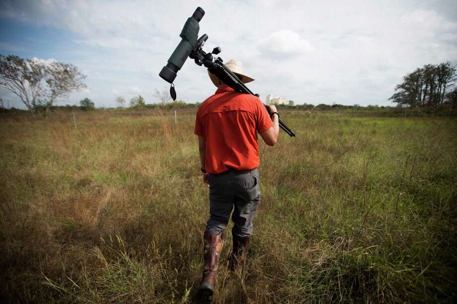 Jaime Gonzalez, the Katy Prairie Conservancy conservation education director, leads a group of the Katy Prairie in 2015. The prairie grasses increase the soil's absorbency. Photo: Marie D. De Jesus, Houston Chronicle / © 2015 Houston Chronicle