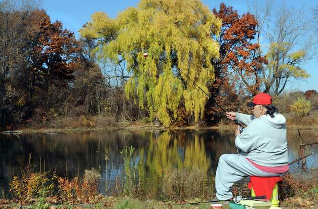 Jim Bacon of Grafton fishes in a small pound off Russell Road on Thursday Nov. 5, 2015 in Albany, N.Y.  (Michael P. Farrell/Times Union) Photo: Michael P. Farrell