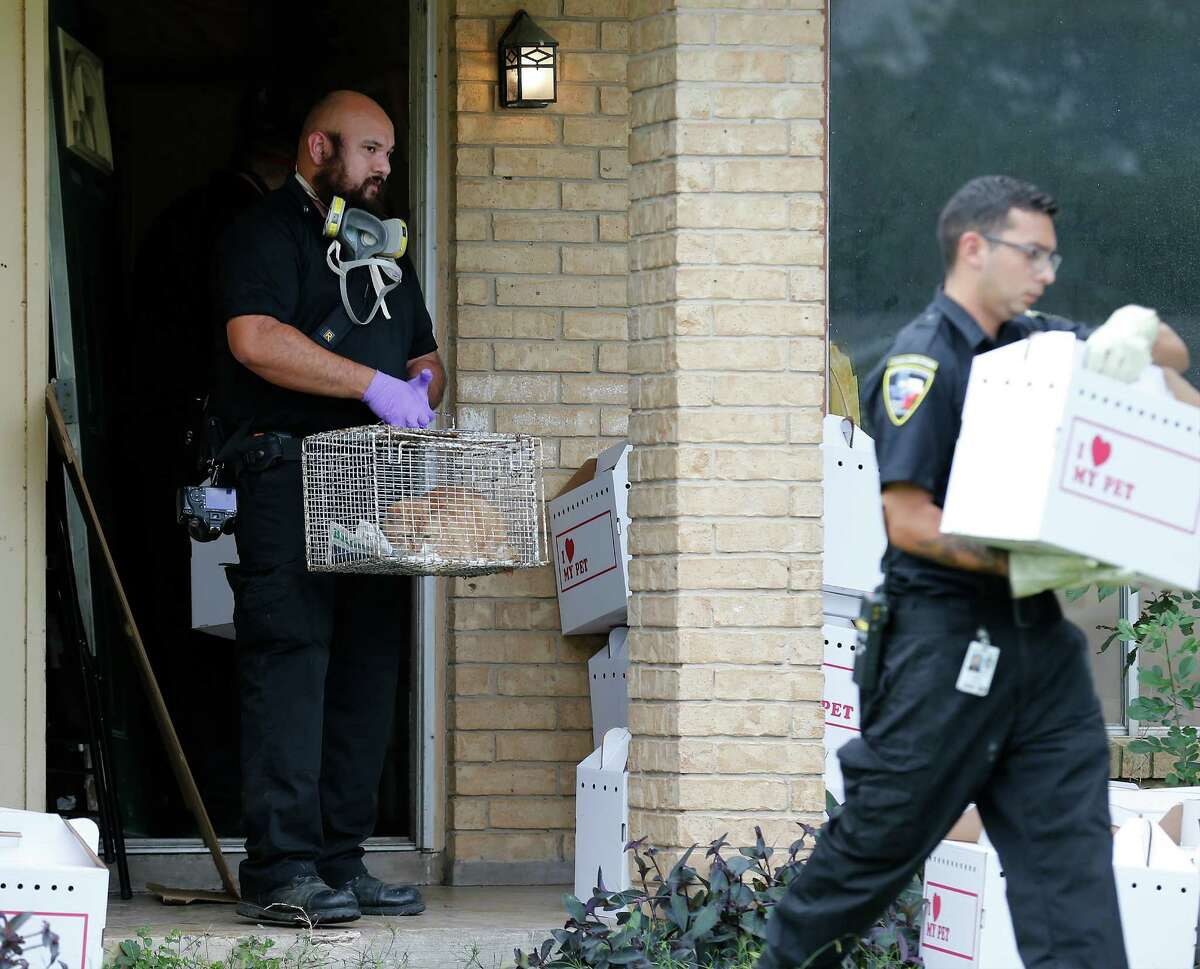 Animal Care Services officers remove over 20 cats from a home on the 2800 block of Shadow Way on Thursday, Nov. 5, 2015. ACS officials said they have had issues with the owner on one other occasion and were checking on her when officers discovered the horrid conditions inside her home with cats strewn throughout the house. San Antonio Fire Department was called out to exhaust the high levels of ammonia from inside the home before ACS officers could extract the cats. Several charges await the homeowner from various agencies including Code Compliance and Animal Care Services. The cats will be taken to ACS for assessment and likely will be placed for adoption in the future.
