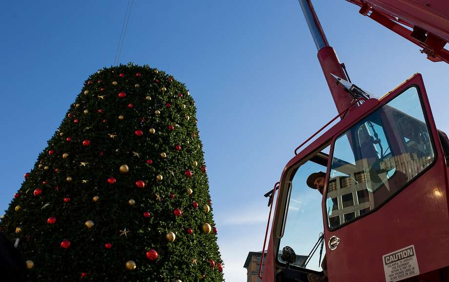 Danny Seivirt peeks out of the crane during the installation of the Union Square Christmas on Thursday, Nov. 5, 2015 in San Francisco, Calif. Photo: Nathaniel Y. Downes, The Chronicle