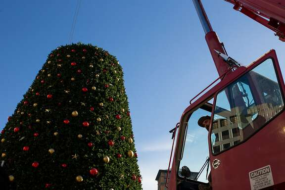 Danny Seivirt peeks out of the crane during the installation of the Union Square Christmas on Thursday, Nov. 5, 2015 in San Francisco, Calif.