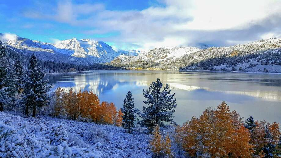 June Lake (Photo by Alicia Vennos) Photo: Courtesy CaliforniaFallColor.com