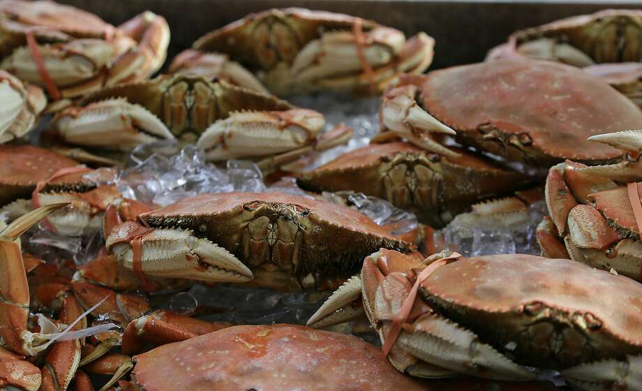 Imported Dungeness crabs are shown for sale at Fisherman's Wharf Thursday, Nov. 5, 2015, in San Francisco. Wildlife authorities delayed the local Dungeness crab season and closed the rock crab fishery for most of California on Thursday, just days after warning of dangerous levels of a neurotoxin linked to a massive algae bloom off the coast. (AP Photo/Eric Risberg) Photo: Eric Risberg, Associated Press