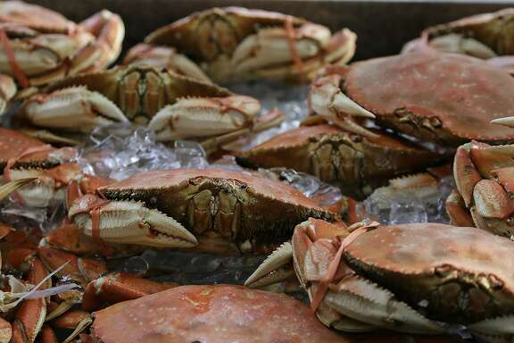 Imported Dungeness crabs are shown for sale at Fisherman's Wharf Thursday, Nov. 5, 2015, in San Francisco. Wildlife authorities delayed the local Dungeness crab season and closed the rock crab fishery for most of California on Thursday, just days after warning of dangerous levels of a neurotoxin linked to a massive algae bloom off the coast. (AP Photo/Eric Risberg)