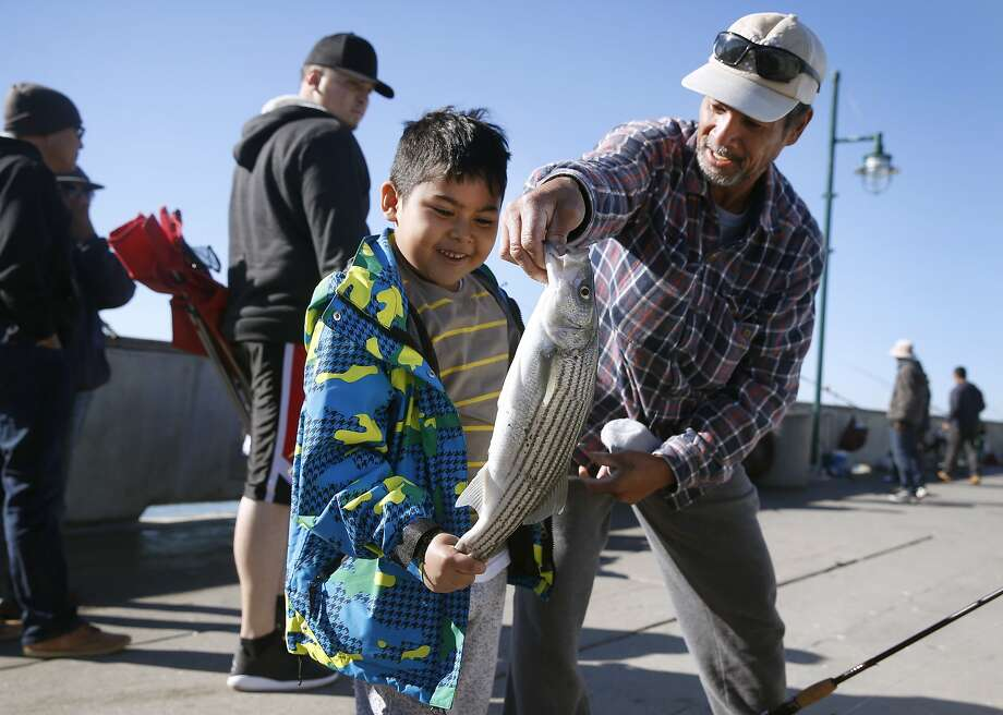 Sean Santos, 7, admires the 18½-inch striped bass that he landed with help from Mata, his grandfather, at the Pacifica Pier. Family members were skeptical about the crabbing ban but were fishing instead. Photo: Paul Chinn, The Chronicle