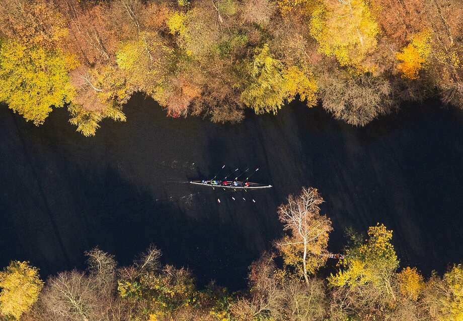 In this aerial view an eight rowing  boat   is framed by autumnal colored trees  on a canal in the city of Hamburg, northern Germany, Sunday Nov. 8, 2015. Photo: Daniel Bockwoldt, Associated Press