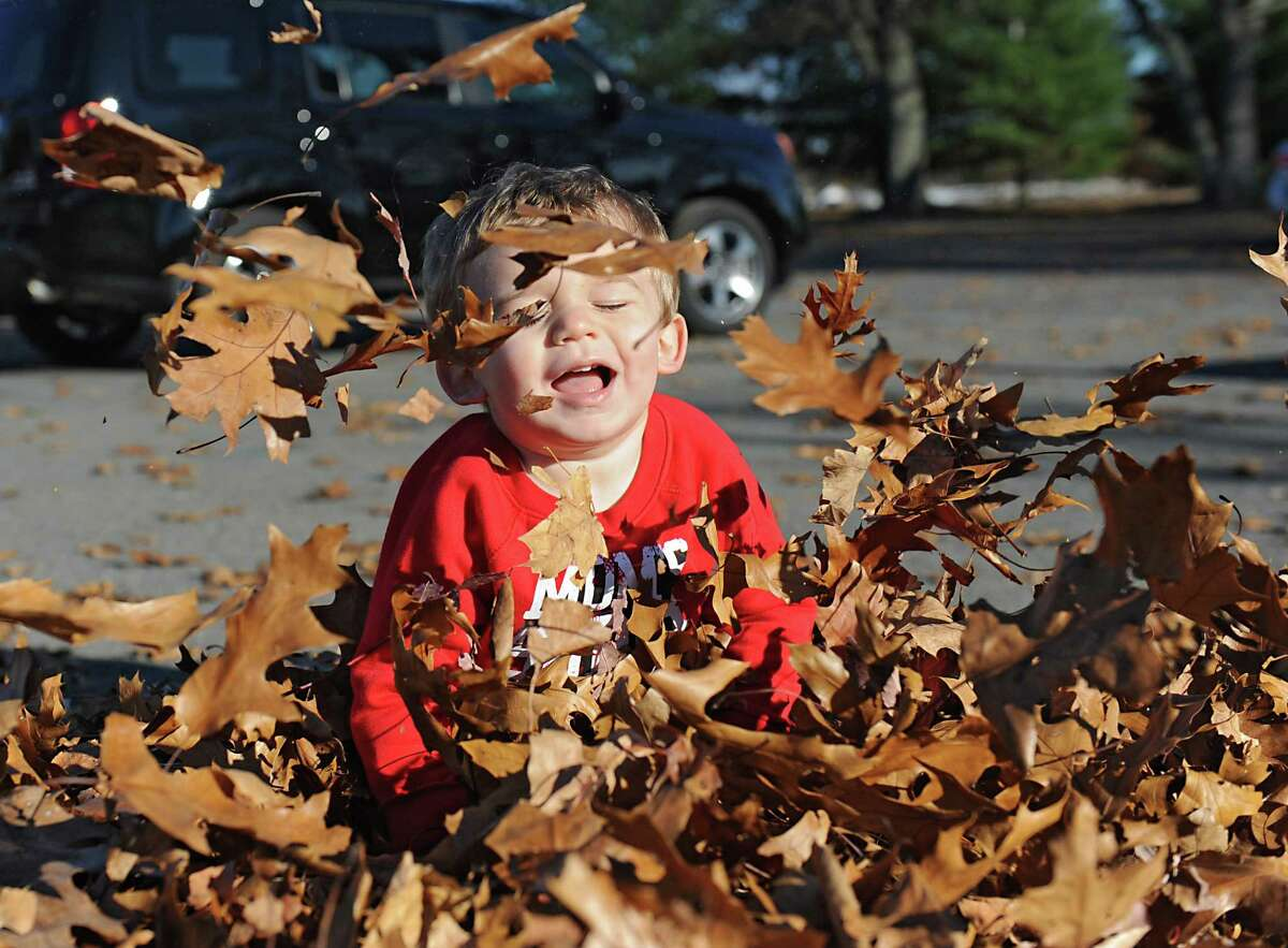 Hunter Lloyd of Schenectady, age 18 months, enjoys a mild day playing in leaves at The Crossings on Monday, Nov. 9, 2015, in Colonie, N.Y. (Lori Van Buren / Times Union)