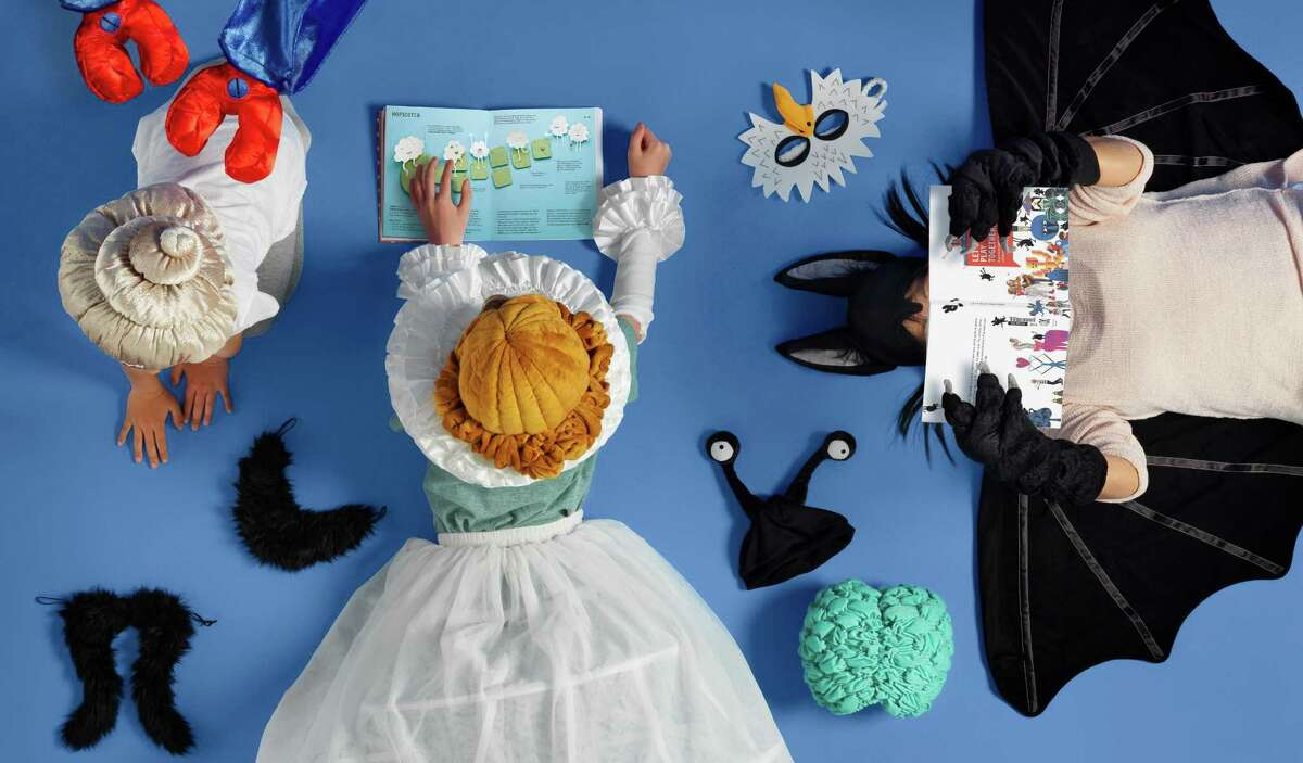 LATTJO role-playing toys include a queen costume (collar $9.99, arms $6.99, crinoline and skirt $19.99) and various hats, wigs and beards ($1.99 to $9.99).
