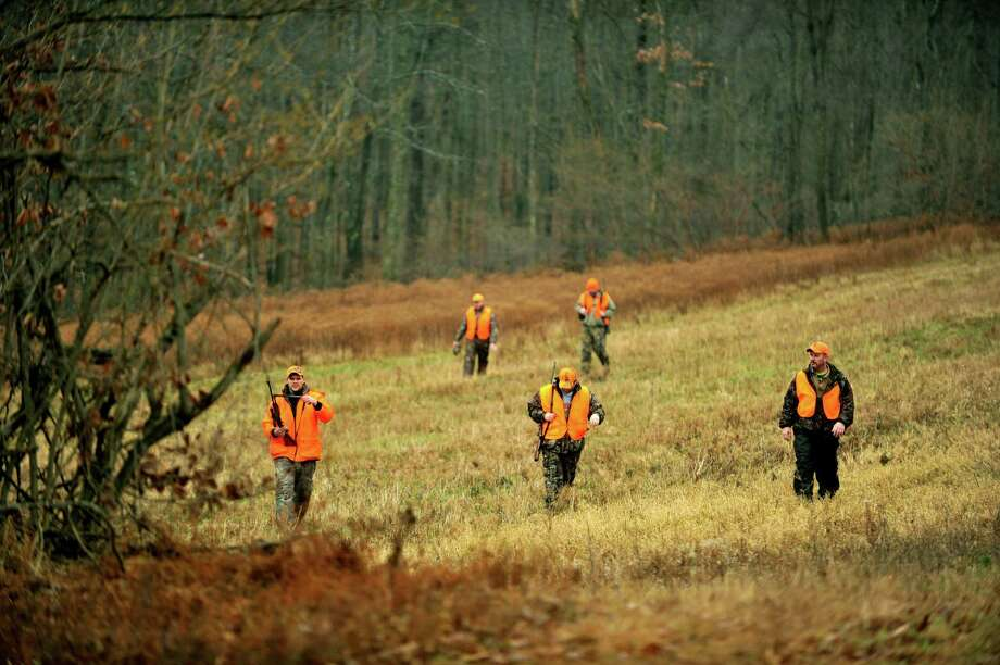 Connecticut's fall firearms deer season which begins on Wednesday, Nov. 18, 2005. In this photo, a group of hunters from a Philipsburg hunting club walk together trying to push out deer at Moshannon State Forest, Clearfield County, Pa., on Monday, Dec. 1, 2014. Photo: Nabil K. Mark / Centre Daily Times Via Associated Press / Centre Daily Times