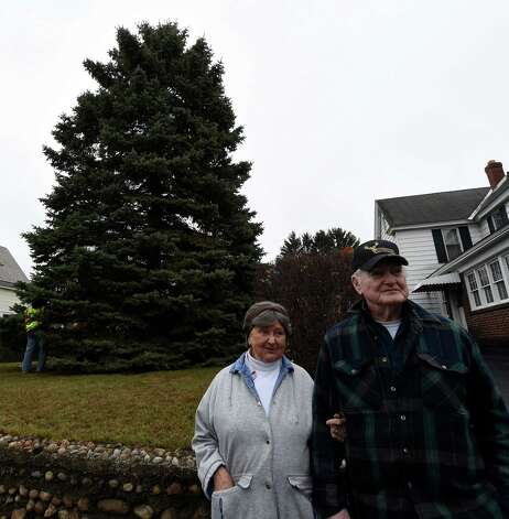 Evelyn and Philip Parks stand in front of the blue spruce that they donated, Nov. 12, 2015 from the front lawn of their home in Rotterdam, N.Y.  The stately tree which they donated  to the State of New York will be placed at the Empire State Plaza as the state's Holiday tree.  (Skip Dickstein/Times Union) Photo: SKIP DICKSTEIN / 00034212A