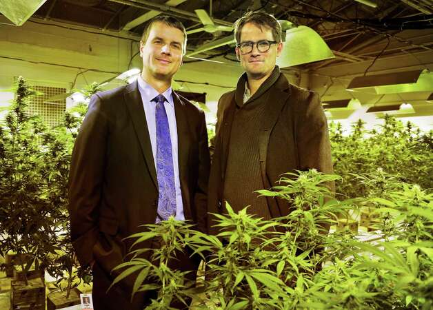 Dr. Kyle Kingsley, left, CEO of Vireo HealthFirst and Dr. Stephen Dahmer, Chief Medical Officer for Vireo Health of New York amid cannabis plants at their Tryon Technology Park and Incubator Center Thursday Nov. 12, 2015 in Perth, NY.  (John Carl D'Annibale / Times Union) Photo: John Carl D'Annibale / 10034216A