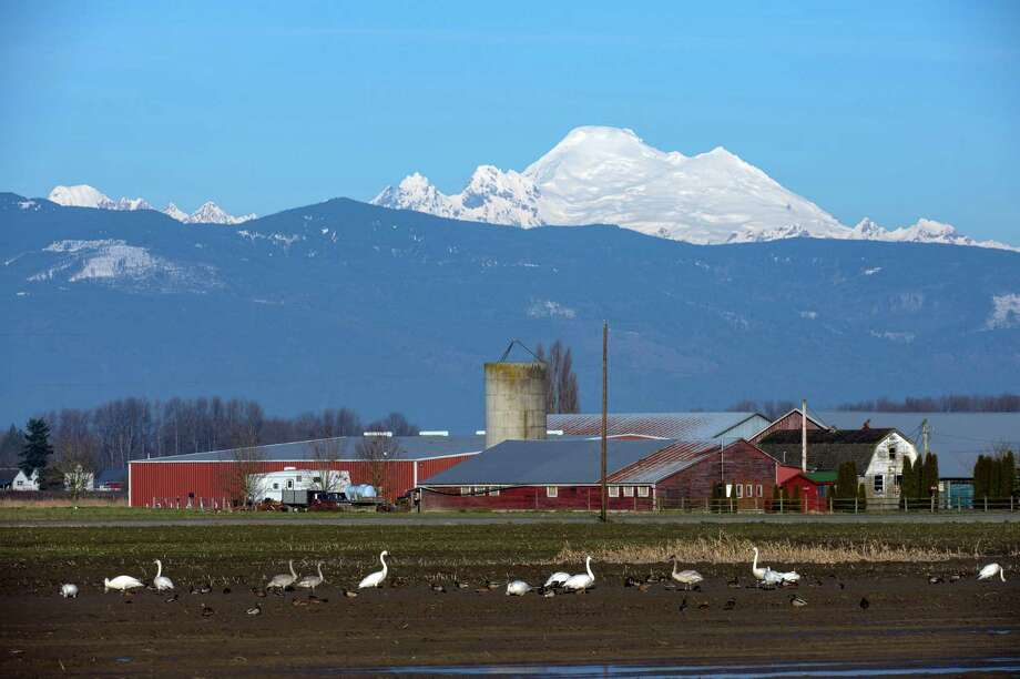 10. Skagit County2014 median household income: $54,9172010 median household income: $54,811Percent change: 0.19 percent Photo: Wolfgang Kaehler, Getty Images / © 2014 Wolfgang Kaehler