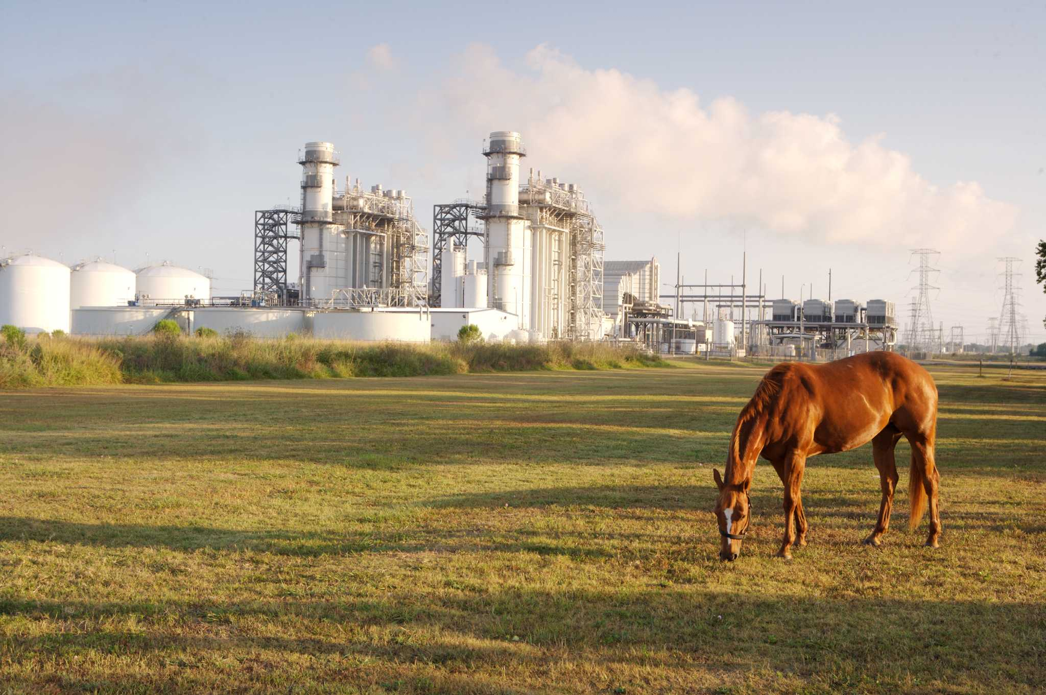 Calpine buys Noble Americas Energy for nearly 1 billion