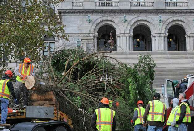 OGS and DOT crews put up the state holiday tree in the east park of the Capitol on Friday Nov.13, 2015 in Albany, N.Y. (Michael P. Farrell/Times Union) Photo: Michael P. Farrell / 00034229A