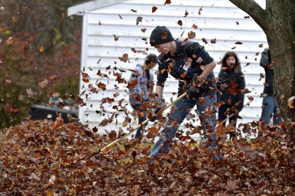 Noah Elfenbein, of Brookfield, rakes leaves during the annual Rake 'N Bake in Brookfield. Elfenbein volunteered with other members of Brookfield High School Key Club to do fall cleanup on a yard on Powder Horn Hill Road, in Brookfield on Saturday, November 14, 2015, in Brookfield, Conn.