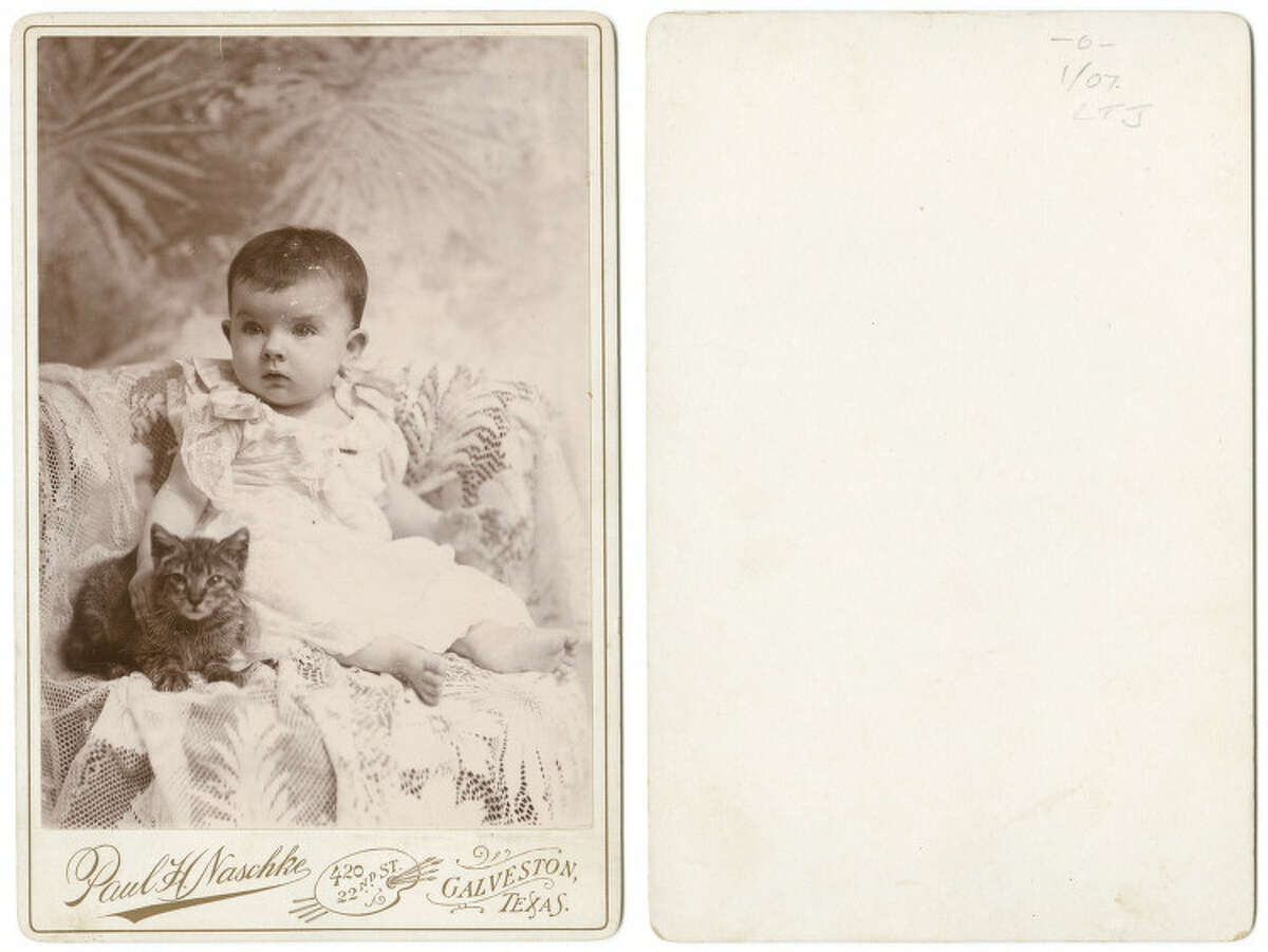 Baby seated with cat, circa 1890