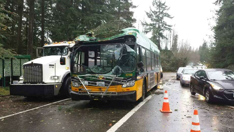 A tree hit a Metro bus Tuesday morning near Shoreline Community College during the day's wind storm. The driver was the sole occupant and was not seriously injured. Photo: Courtesy King County Sheriff's Office