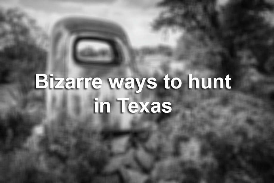 Once Texas's popular hunting season is in session, hunters go all out to prove they mean business and to gain an edge over their prey. See some of the bizarre, awesome and questionable techniques that people use to hunt. Photo: File