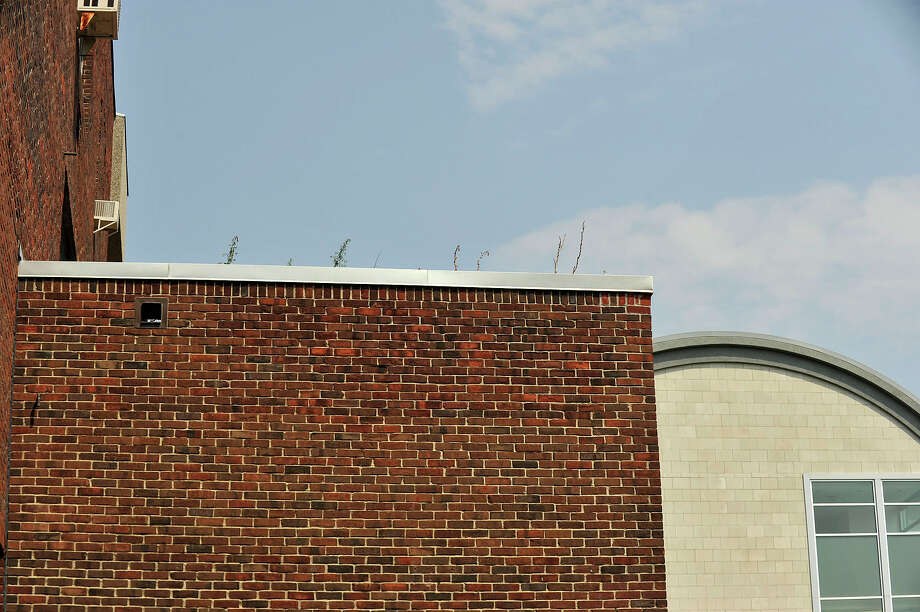 Vegetation grew on the roof at Stamford High School before workers removed it just before the start of the school year. Photo: Jason Rearick / Hearst Connecticut Media / Stamford Advocate