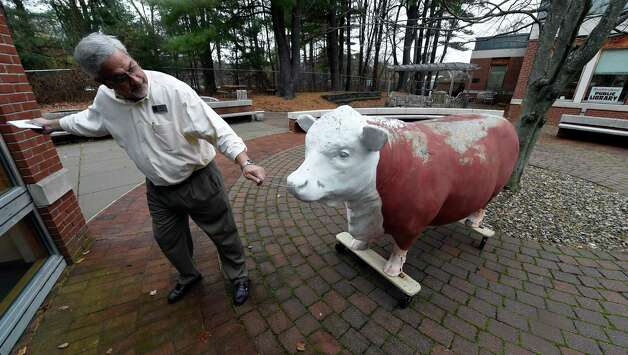 Mark Curiale, public information officer at Guilderland Public Library, tries to guide the fiberglass cow statue into position at the Guilderland Public Library Thursday, Nov. 19, 2015, in Guilderland, N.Y. The statue spent more than 50 yrs. atop the old Greulich's Market on Carman Road and was a town landmark. The iconic steer has a new home in the garden at the library and has been named Greufus.   (Skip Dickstein/Times Union) Photo: SKIP DICKSTEIN / 10034371A