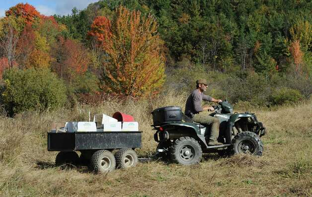 "Bob Comis rides his ATV to harvest potatoes and radishes at his InLine Farm Thursday, Oct. 15, 2015 in Schoharie, N.Y.  Comis is featured in an upcoming full-length documentary, ""The Last Pig."" The film describes his years of raising pigs for slaughter and how he had an epiphany about killing the affectionate, smart animals a year ago. He quit pig farming, became a vegan and switched his Schoharie acreage to an organic vegetable farm that is a source for vegan restaurants. This was one of the fields the pigs would graze in. (Lori Van Buren / Times Union) Photo: Lori Van Buren / 10033712A"