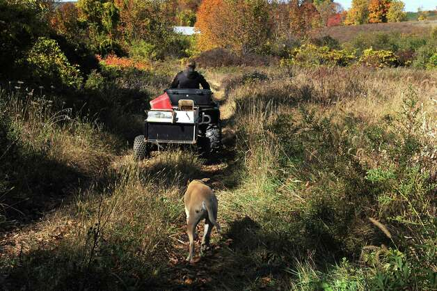 "Bob Comis rides his ATV to harvest potatoes and radishes with his dog Monk close behind at his InLine Farm Thursday, Oct. 15, 2015 in Schoharie, N.Y.  Comis is featured in an upcoming full-length documentary, ""The Last Pig."" The film describes his years of raising pigs for slaughter and how he had an epiphany about killing the affectionate, smart animals a year ago. He quit pig farming, became a vegan and switched his Schoharie acreage to an organic vegetable farm that is a source for vegan restaurants. This was one of the fields the pigs would graze in. (Lori Van Buren / Times Union) Photo: Lori Van Buren / 10033712A"