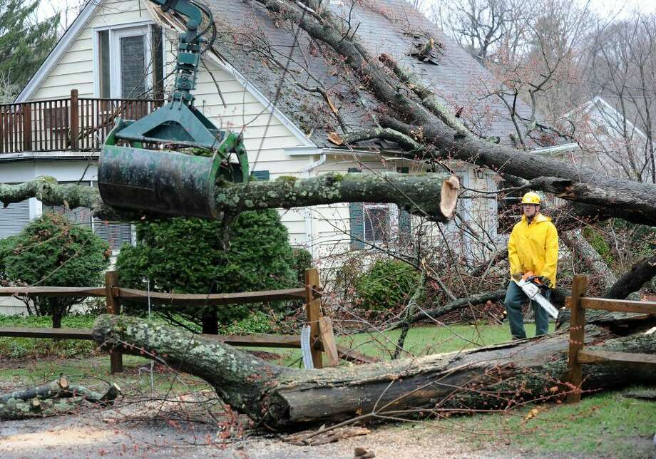 The city Forestry Department worked to clear a tree that fell on a house on Great Plain Road in Danbury Tuesday afternoon, March 30, 2010. Photo: Carol Kaliff / The News-Times