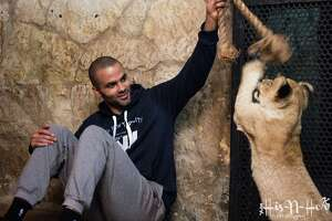 Spurs' Tony Parker hangs out, names three lion cubs at S.A. Zoo - Photo