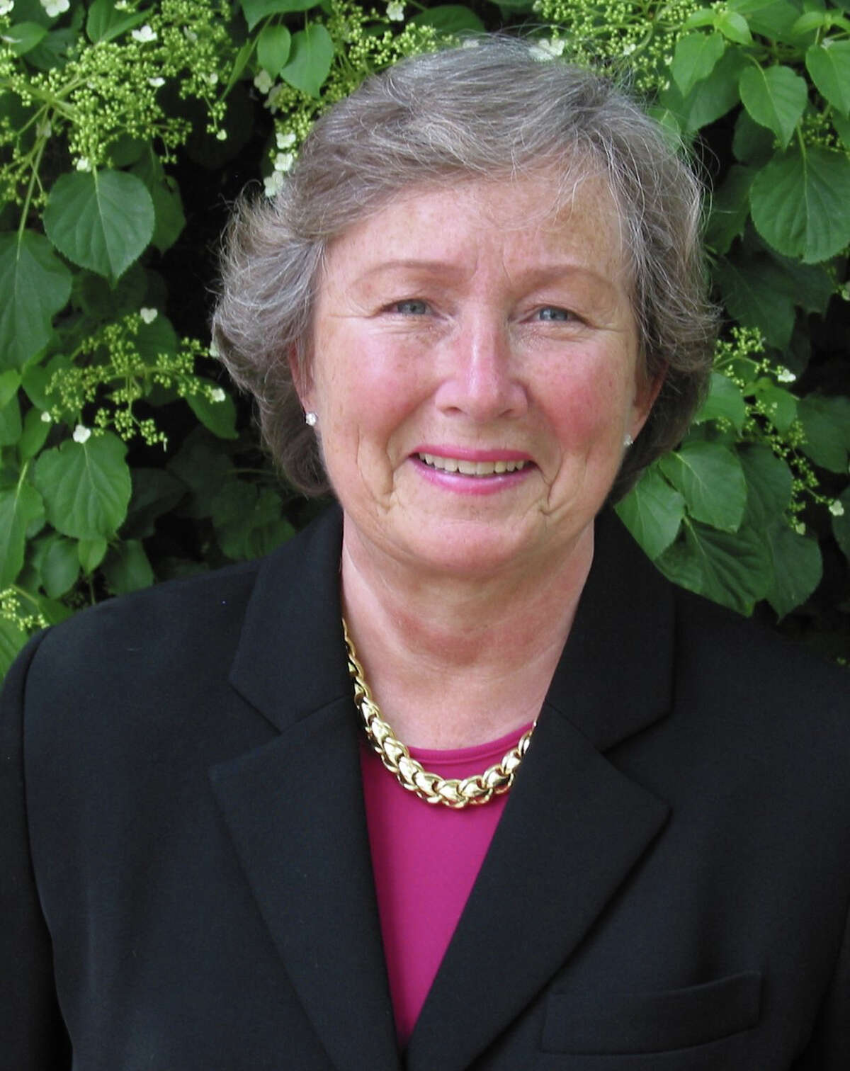 New Canaan resident and Town Council Member Penelope L. Young has been reappointed to serve on the 21-volunteer member board of Connecticut's Legislative Commission on Aging.