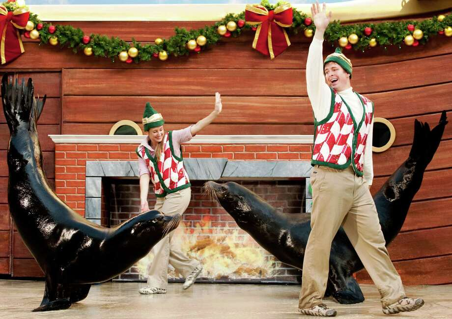 SeaWorld San Antonio's Christmas Celebration will be Nov. 19 though Jan. 1, and feature the park's animals in special holiday roles and activities. Photo: Courtesy Photo / 2009 SeaWorld Orlando