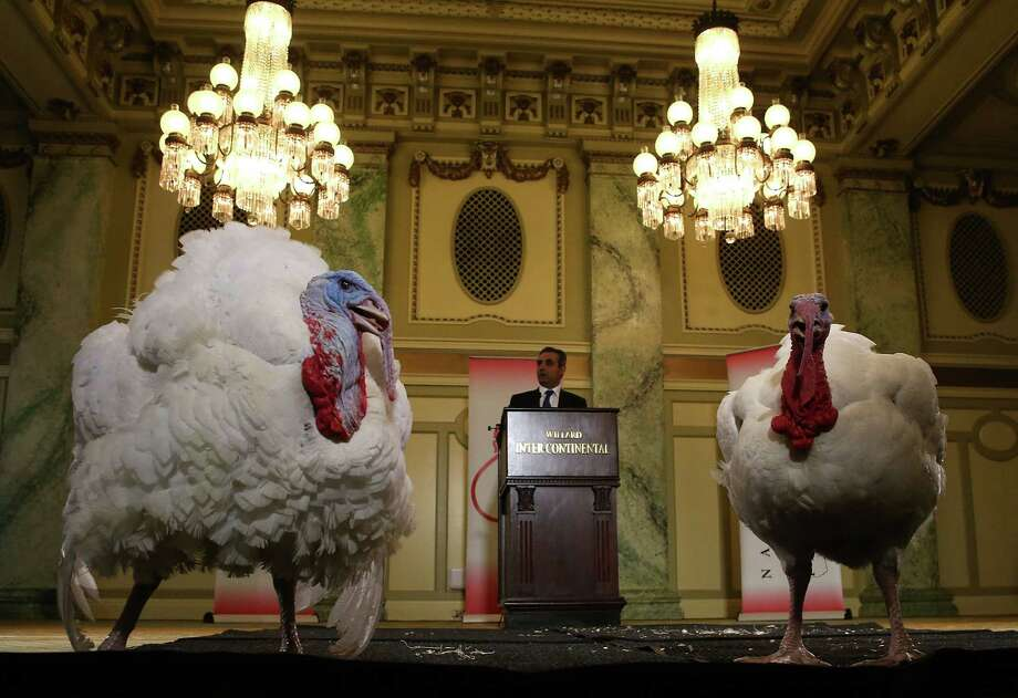 """Jihad Douglas, chairman of the National Turkey Federation, introduces two turkeys during a media availability at the Willard Inter Continental Hotel ahead of their """"pardon"""" by US President Barack Obama at the White House on Tuesday. Both turkeys will reside at their new home, Morven Park in Leesburg, Virginia. Photo: Mark Wilson / Getty Images / 2015 Getty Images"""