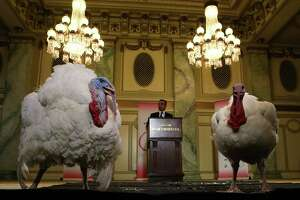 Gov. Malloy offers Thanksgiving message - Photo