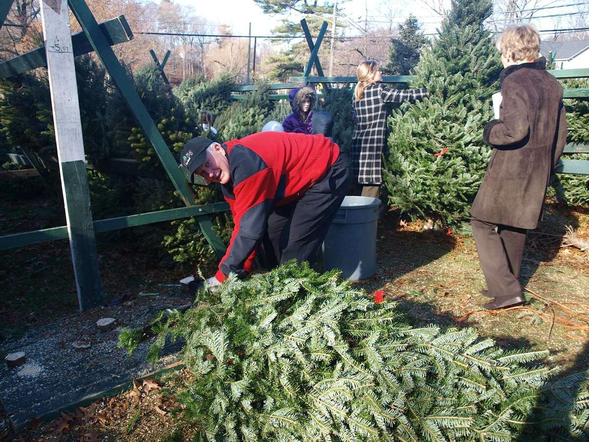 Peter Griffin cuts down a tree for sale at the First Congregational Church in Greenwich's annual tree sale, which returns this weekend to benefit local charities.