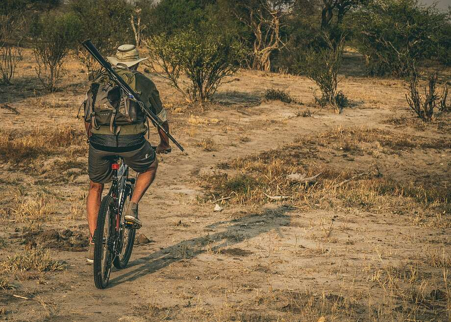 Guests at Jozibanini Camp ride mountain bikes to a remote part of Hwange National Park, where tourists' presence helps guard against poachers. Photo: Mark Sissons
