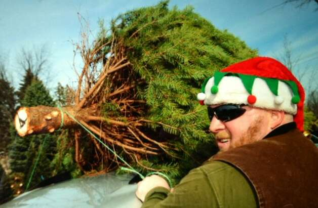 It's Christmas tree time at McDonough's Farm in East Greenbush on a sunny Friday, Nov. 27, 2015. (Michael P. Farrell/Times Union)