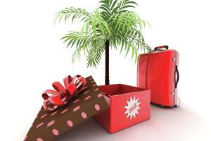 Travel bargains galore on Cyber Monday - Photo