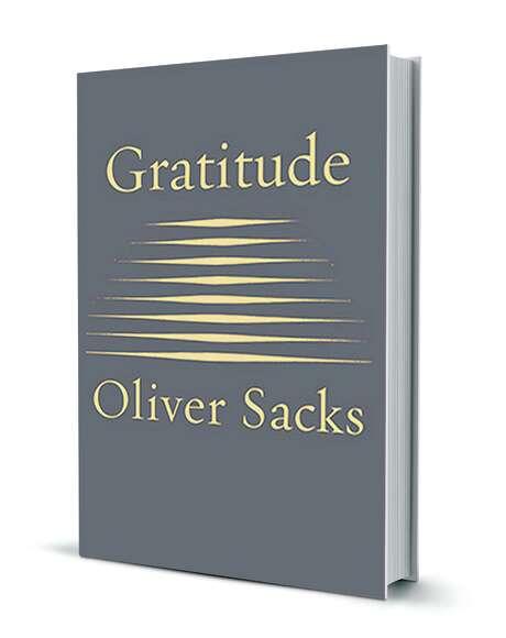 essay gratitude