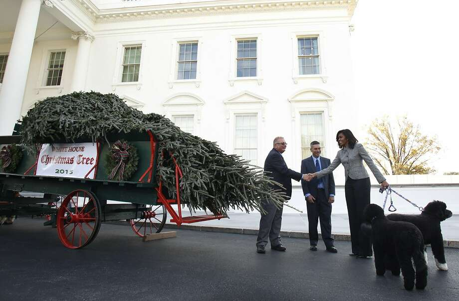 First lady Michelle Obama shakes hands with Jay Bustard as she welcomes the official White House Christmas Tree to the White House. The tree, which will be on display in the Blue Room, is an 18.5-foot fir grown by Bustard in Pennsylvania. The first lady says this year's tree will honor the military. Photo: Yuri Gripas, AFP / Getty Images
