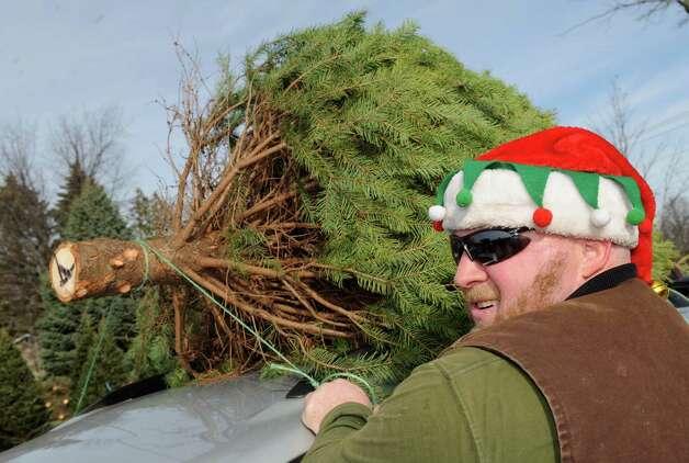Nick Ferrara of McDonough's Farm ties a fresh cut tree to the top of a car on Friday Nov. 27, 2015 in East Greenbush N.Y. (Michael P. Farrell/Times Union) Photo: Michael P. Farrell / 10034339A