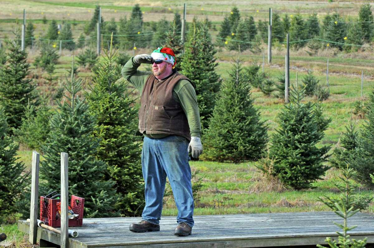 Nick Ferrara of McDonough's Farm looks out from a flatbed for families that have found their holiday tree to cut on Friday Nov. 27, 2015 in East Greenbush N.Y. (Michael P. Farrell/Times Union)