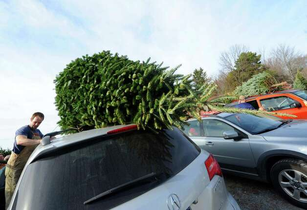 Holiday trees fresh cut and loaded on to vehicles at McDonough's Farm on Friday Nov. 27, 2015 in East Greenbush N.Y. (Michael P. Farrell/Times Union) Photo: Michael P. Farrell / 10034339A